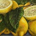 """""""Desert Lemons"""" 26 x 48 inches. oil on linen"""