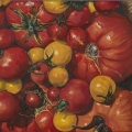 """Tomatoes Gallisteo"" 22 x 48 inches. oil on linen"
