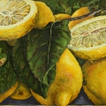"""Desert Lemons"" 26 x 48 inches. oil on linen"