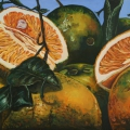"""Oranges Rhaina Elizabeth I"" 22 x 48 inches. oil on linen"