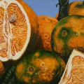 """Oranges Rhaina Elizabeth II"" 22 x 48 inches. oil on linen"